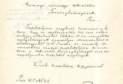 Hogyan ünnepelték az evangélikusok a reformáció 400. évfordulóját 1917-ben Baranya megyében